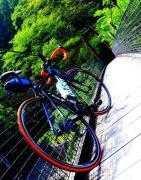 自転車とご飯さえあれば幸せ