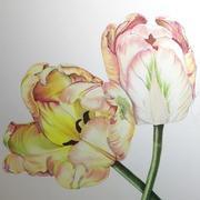 楽しい色鉛筆〜Colored Pencil Art〜