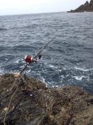 DKZの石鯛釣りブログ