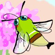 鱗翅目(チョウ目)の写真※主ブログ内副コンテンツ
