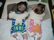 *女の子と男の子の双子子育て*
