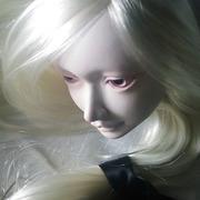Chishiroのターヘル・アナトミア