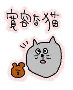 Ayaさんのプロフィール