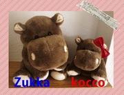 Zukka&Koccoさんのプロフィール