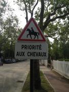port d'auteuilさんのプロフィール