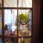 Elder Herb&Antiques
