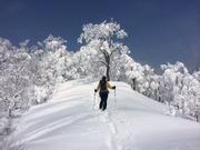山歩きOKAYAMA