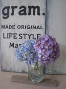 LIFE STYLE Marker