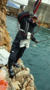 セイゴ釣師さんのプロフィール