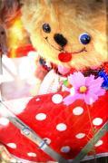 ☆lovelyshamoko55☆sweet memory…♪