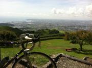 スポーツ自転車屋 cycle house PEAK