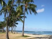 認知症ママとの毎日&ときどきハワイ旅行