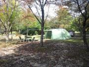 キャンプ&釣りの日記
