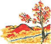 秋山紅樹さんのプロフィール
