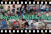 Boozeridez-Kids Blog
