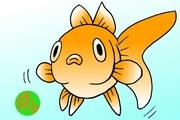 ご金魚とらぶるアクアリウム