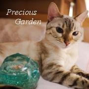 Precious Garden  《東京都八王子》