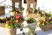 多肉植物と手作り雑貨alu09のsora猫店長も語る