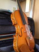 の〜んびりヴァイオリンと島暮らし日記