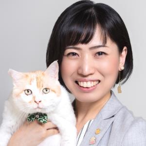 どうぶつ系行政書士・保護猫カフェオーナー服部薫のブログ