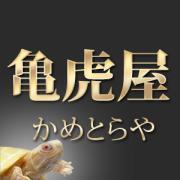 亀虎のブログ