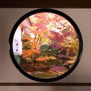 京都散策日記