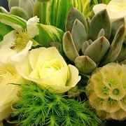 今日もまた季節のお花が届きました。