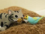 猫とインコと一緒。Happyな毎日♪