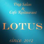Dog Salon & Cafe LOTUS
