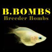 B.BOMBS めだか職人のブログ