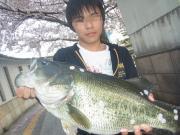 カブクワ飼育と釣りのブログ