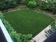 芝生とピアノ