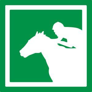 ドスポグ | 競馬の予想とデータが中心のブログ