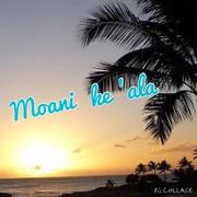 Moani ke 'ala ハワイアンメッセンジャー
