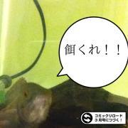 幻影旅団のアクア奮闘記