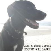 Cafe & Dog's Garden HOUSE VILLAGE