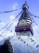 ネパールで奮闘気生活
