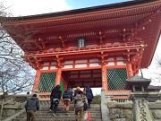 京都ワクワク一人旅