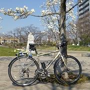 EVERGREEN 自転車と超高層ビル