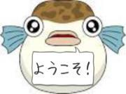 高知・愛媛での釣り好き3バカトリオの気ままな釣行記