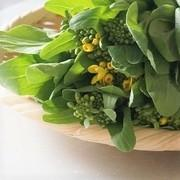 junjunの野菜日記 〜鎌倉ごはん〜