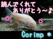 Corimp *