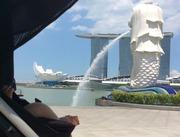 子供とお出かけシンガポール