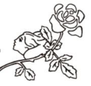 プリザーブドフラワーと「いけばな」のよくばり花教室
