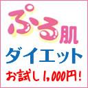 置き換えダイエットの<ぷる肌ダイエット>体験Blog
