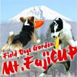 Mt.FujiCUPさんのプロフィール