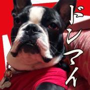 ドンマイ(´・ω・`)