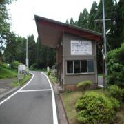 都井岬の野生馬をみにこんね〜^^