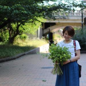 Bonjour!   les fleurs*