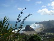 NZらいふ:ニュージーランド情報、日々の出来事